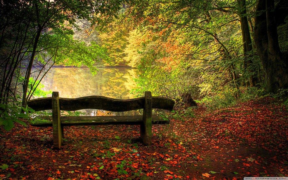 456925__empty-bench-in-fall-scene_p.jpg
