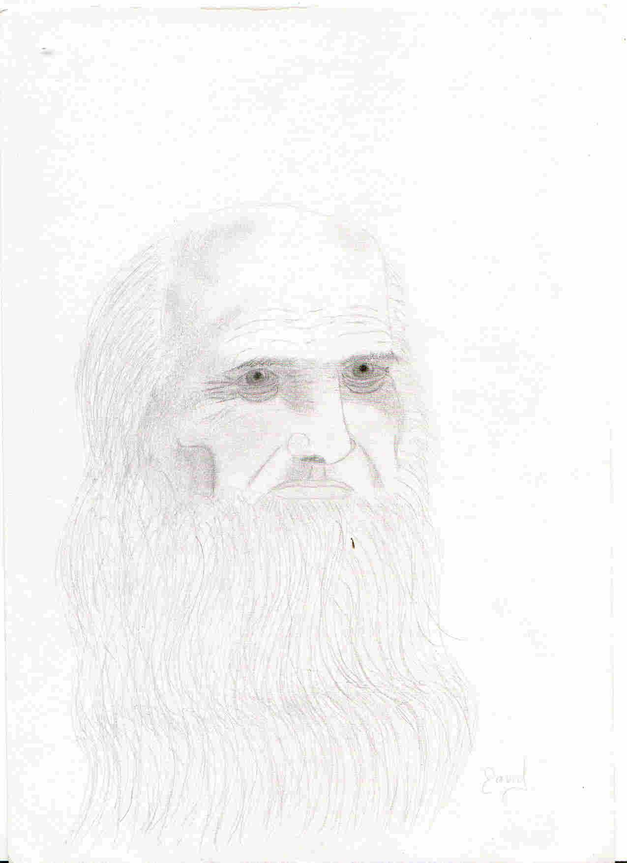 De Vinci.jpg