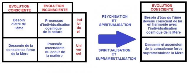 evolution consciente de la consience selon Sri Aurobindo.jpg