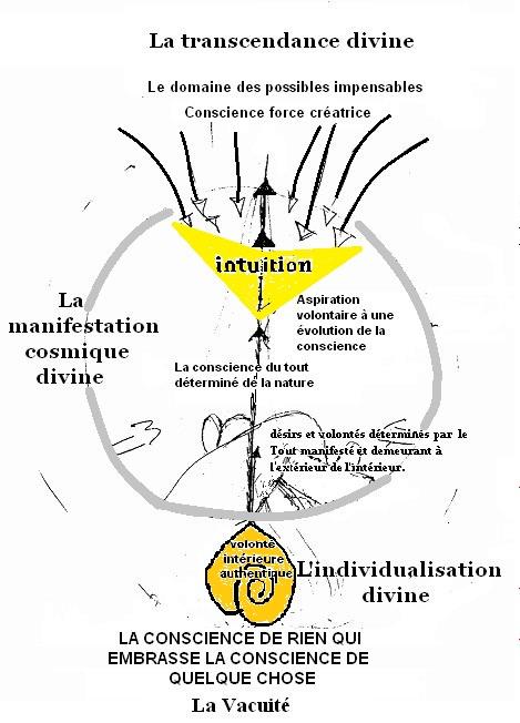 PRINCIPE INDIVIDUALISATION 2.jpg