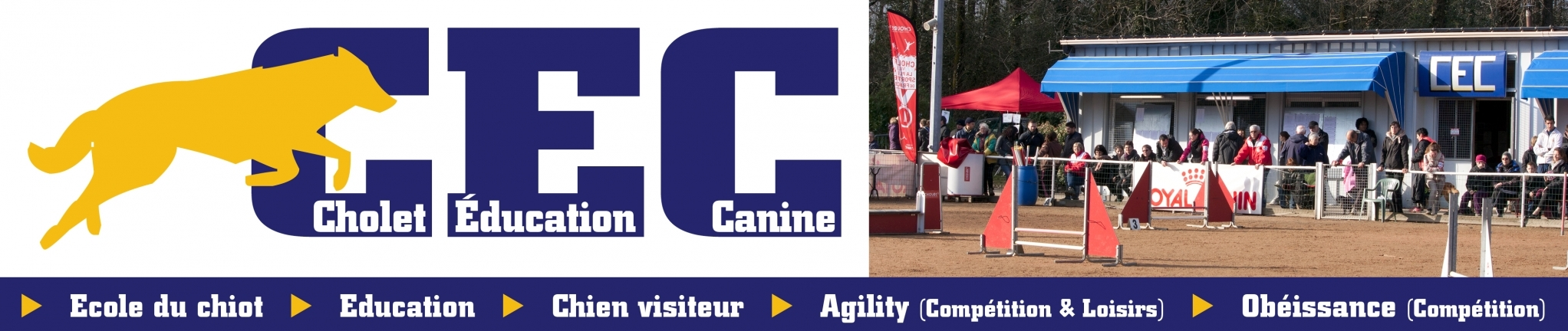 Cholet-Education-Canine
