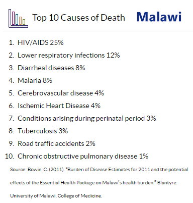 Malawi - Causes of Death.jpg