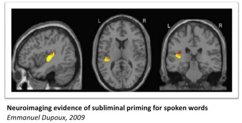 Subliminla Priming (Neuroimaging).jpg