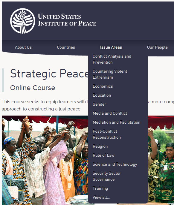 USIP PeaceTech - Issue Areas.jpg