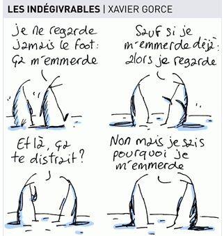 Indegivrables.JPG