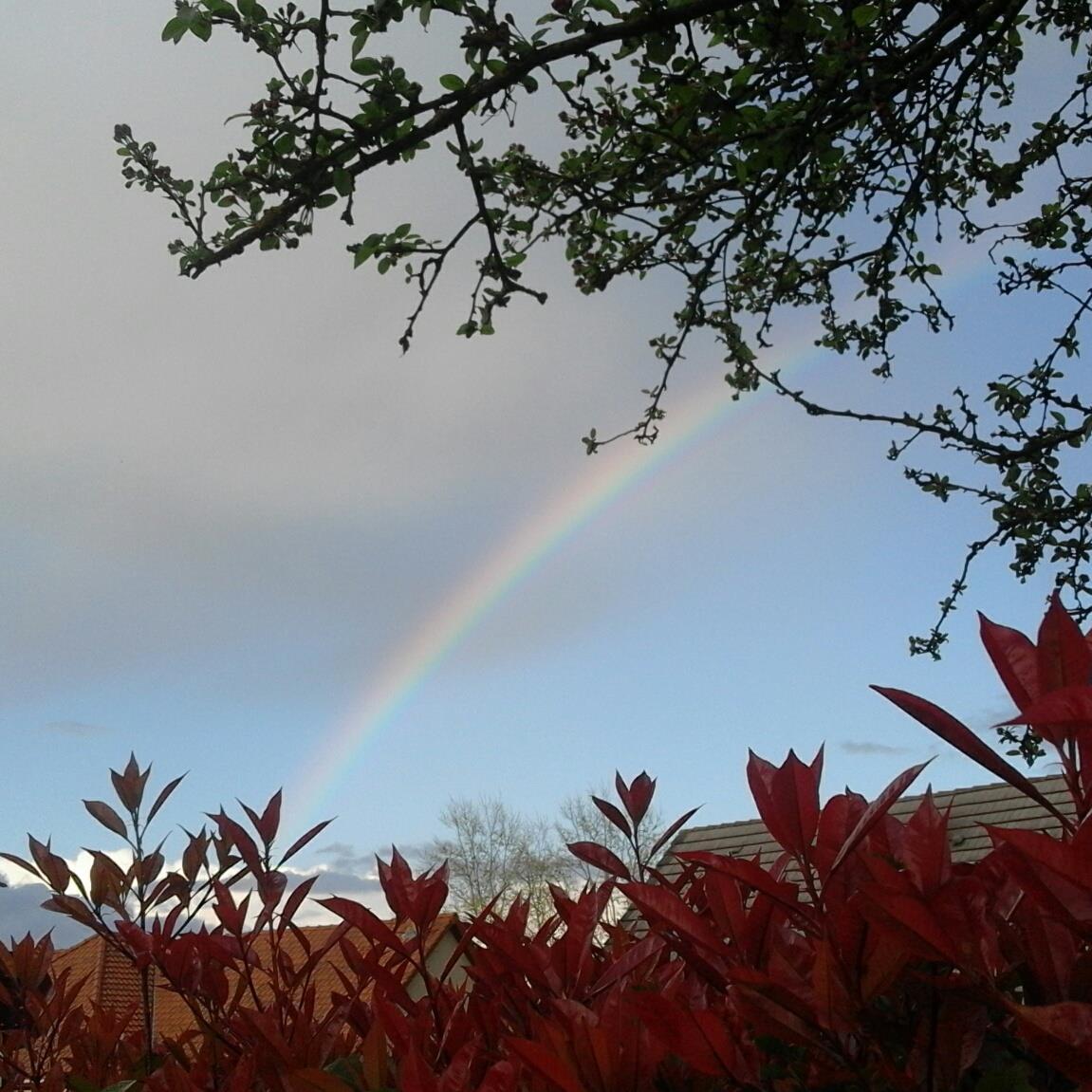 arc en ciel_crop.jpg