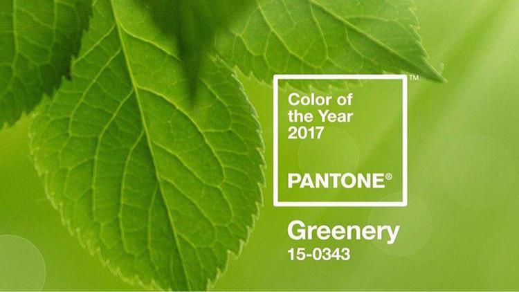 pantone 2017.jpg
