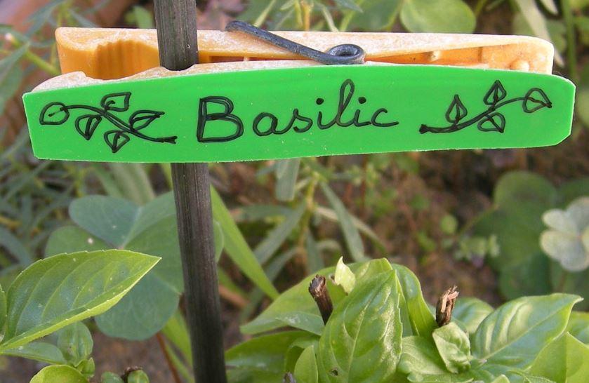 étiquettes de jardin 003.jpg