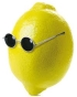 citron4 (1).jpg