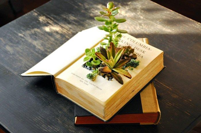 pots-fleurs-objets-récupération-succulentes-vieux-livre.jpg