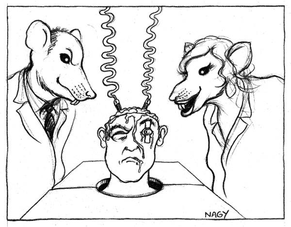 Expérimentation animale-72.jpg