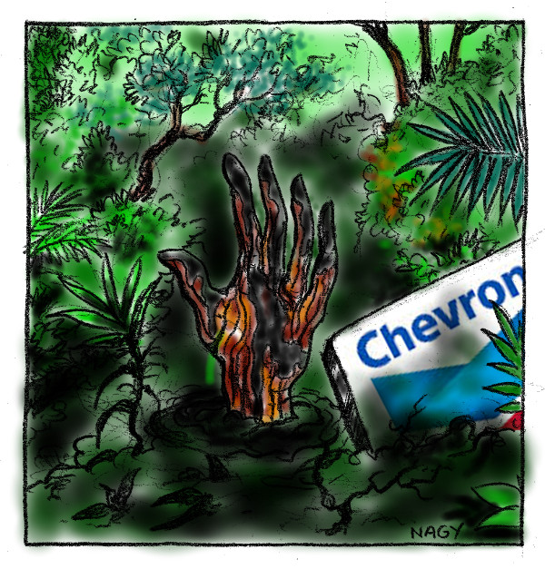 Chevron - pollution-amazonie-72.jpg