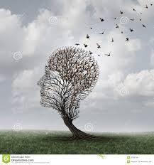 arbre cerveau.jpg
