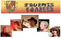 Bienvenue chez les Fourmis Egarées!!