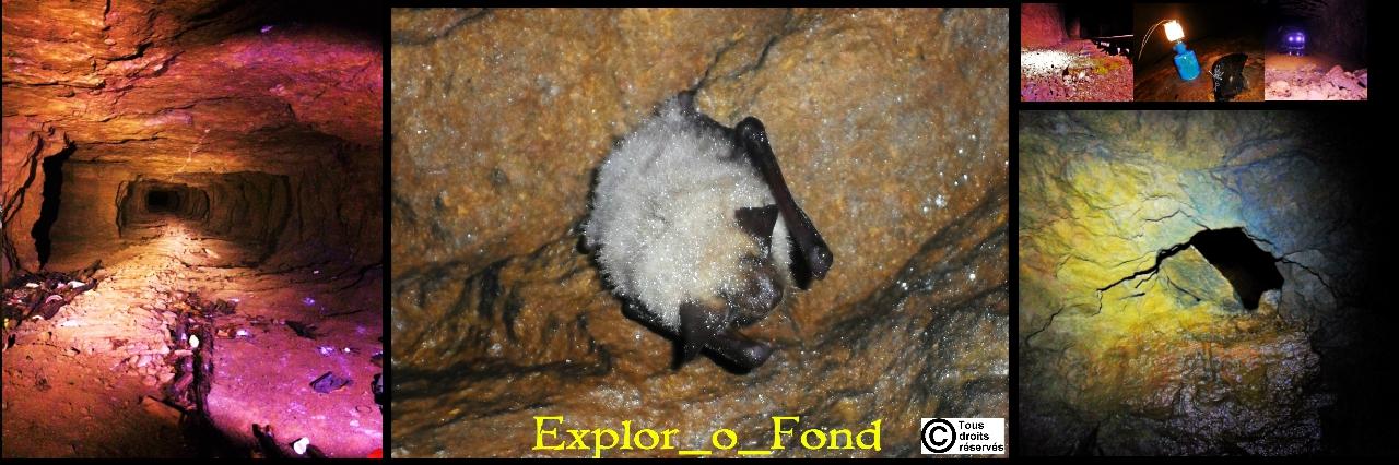 Explor_o_Fond