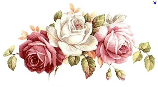 Capture rose