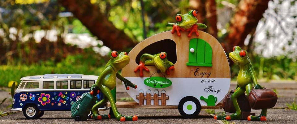 frogs-1358815_960_720.jpg
