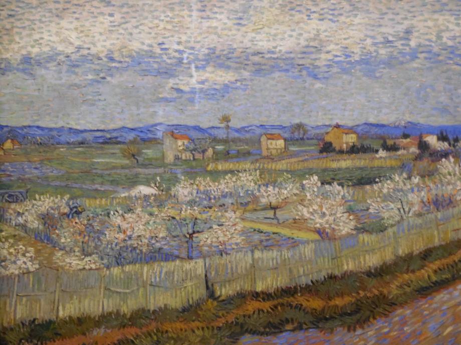 Vincent Van Gogh Pêchers en fleurs, 1889 Mais que c'est beau