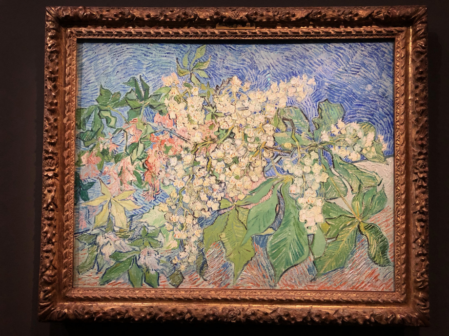 Vincent Van Gogh Branches de marronnier en fleur 1890