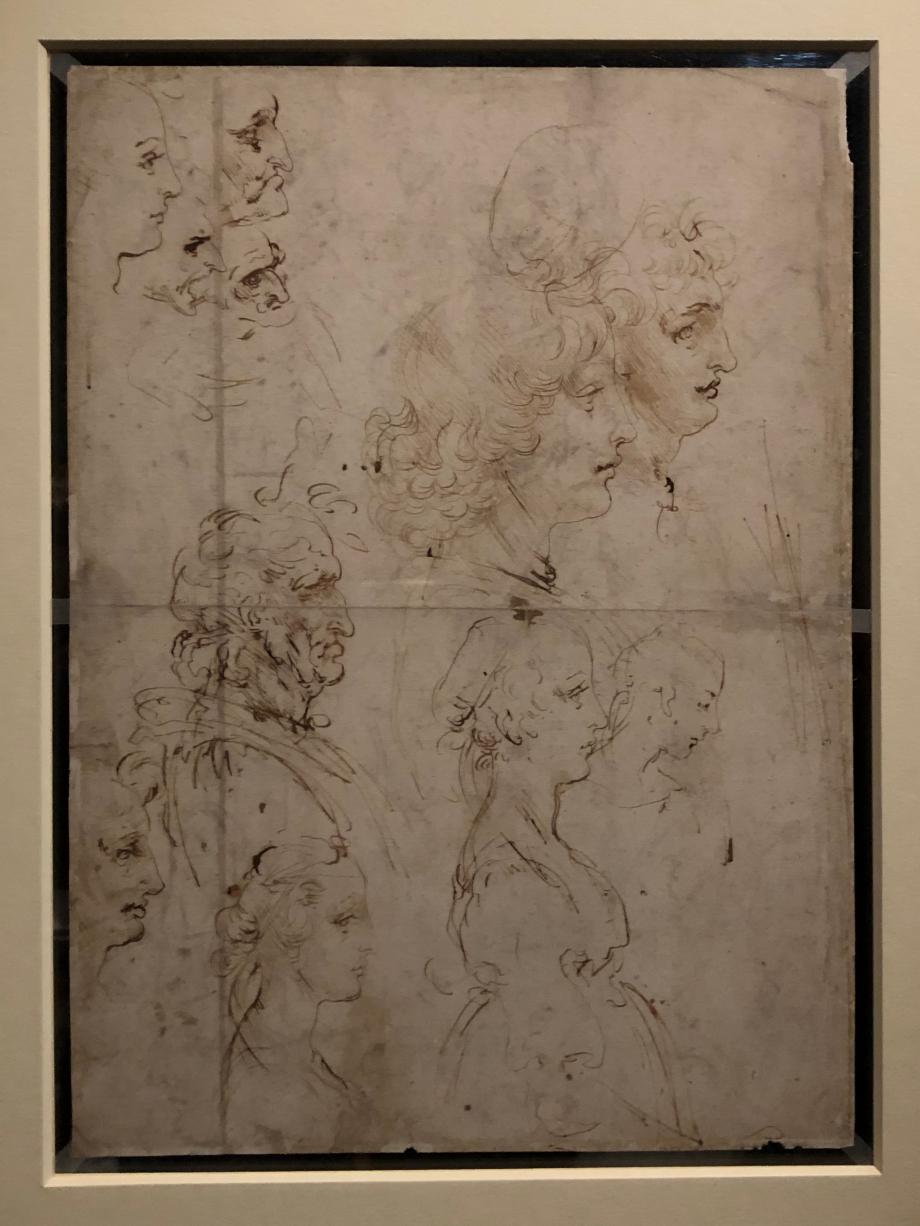 Léonard de Vinci Verso : études de profils humains vers 1478 1480 Windsor Castle, The Royal Collection prêté par Sa Majesté la Reine Elisabeth II  Léonard décline au verso les mêmes thématiques : filles et garçons à la beauté idéale, hommes dans la plénitude de l'âge, vieillards aux traits difformes