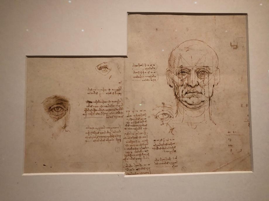 Léonard de Vinci Etude des proportions du corps humains vers 1489 1490 Turin, Biblioteca Reale