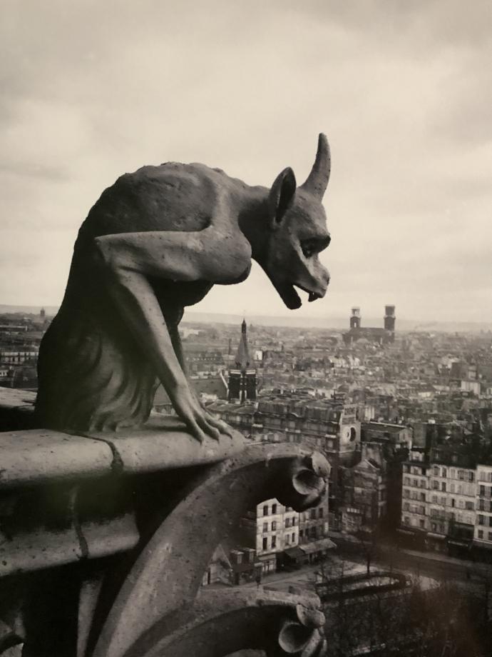 Anonyme Notre-Dame de Paris Détail des gargouilles 1905