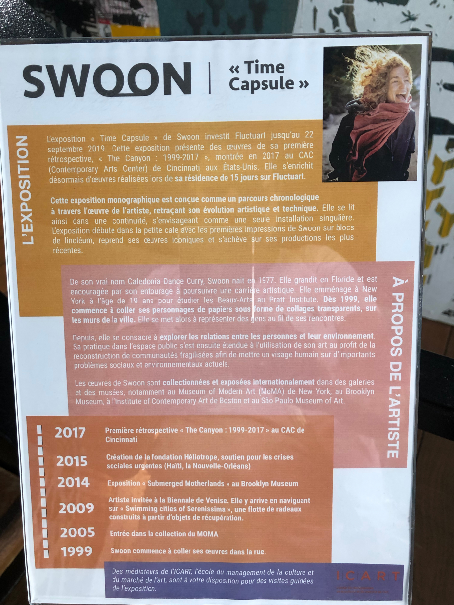 Exposition de Swoon