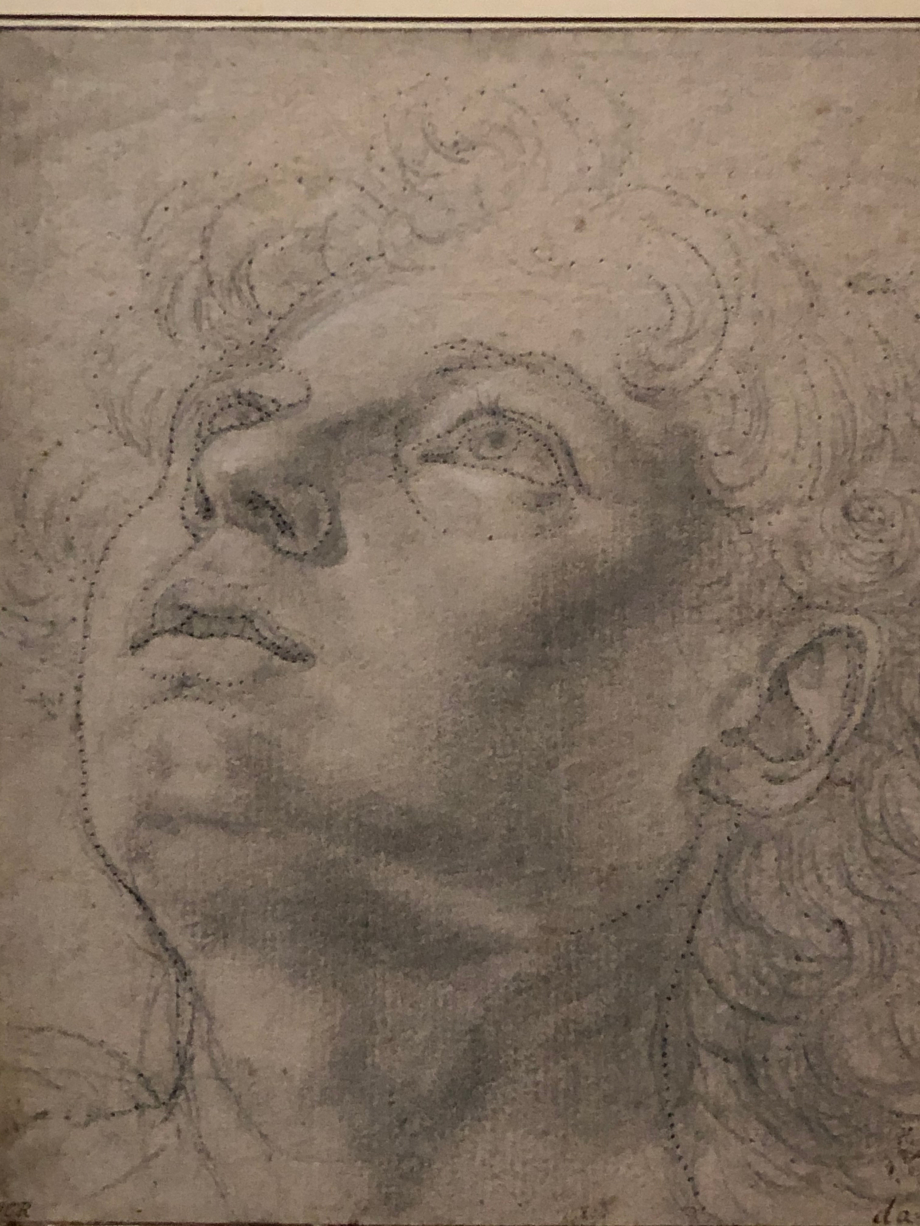 Andrea del Verrochio Etude de tête vers 1470 1475 Berlin, Kupferstichkabinett