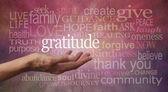 depositphotos_56252393-Gratitude-Attitude.jpg
