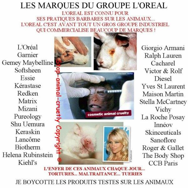 l'oreal animaux.jpg