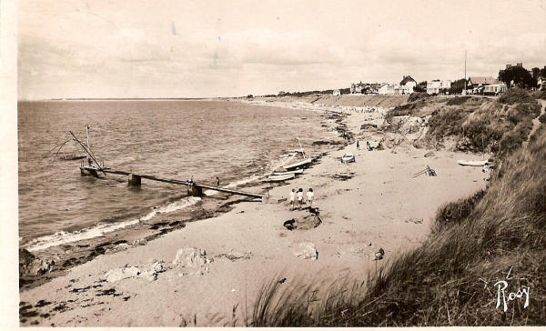 tharon 1952.jpg