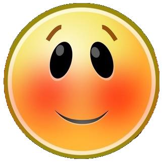 https://static.blog4ever.com/2016/03/816195/Chronique-003-----moticone-joues-rouges.png