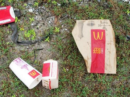 https://static.blog4ever.com/2016/03/816195/Chronique-10---D--chets-McDonald--s.jpg