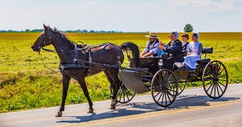 https://static.blog4ever.com/2016/03/816195/Chronique-15---Amish.jpg