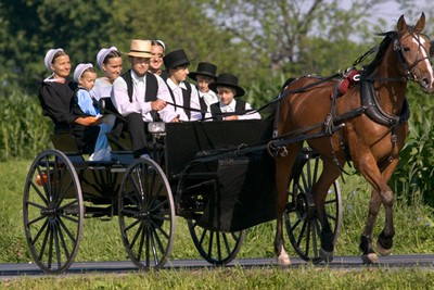 https://static.blog4ever.com/2016/03/816195/Chronique-21-bonus---Amish.jpg