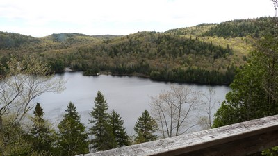 https://static.blog4ever.com/2016/03/816195/Parc-Mauricie---pomme-1.JPG
