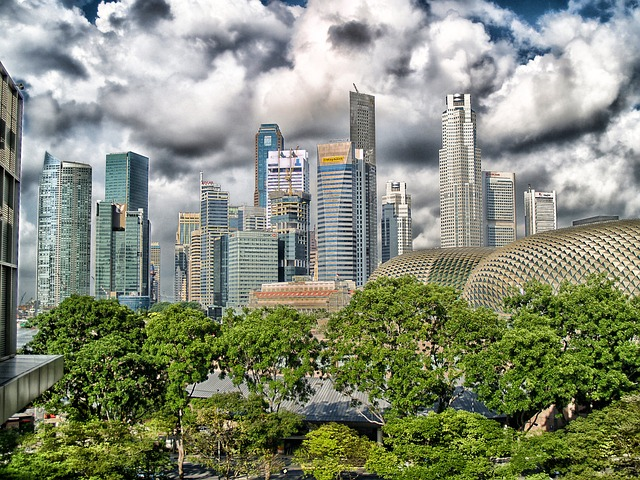 La Ville de Singapour.jpg