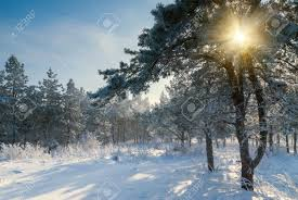 Lumière et neige.jpg