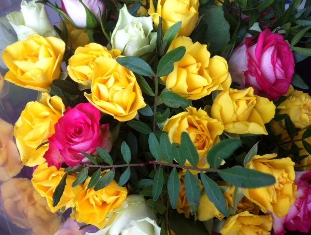 harmonie roses.jpg