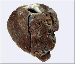 coeur d'agate d'Uruguay.jpg