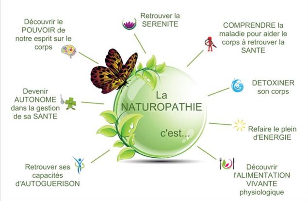 naturo.png