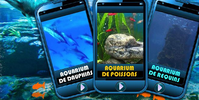 le-trio-des-aquariums.JPG