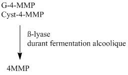synthèse 4MMP.jpg