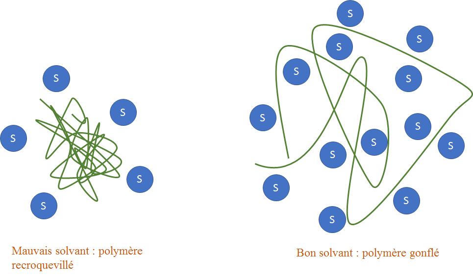polymère solvant.png