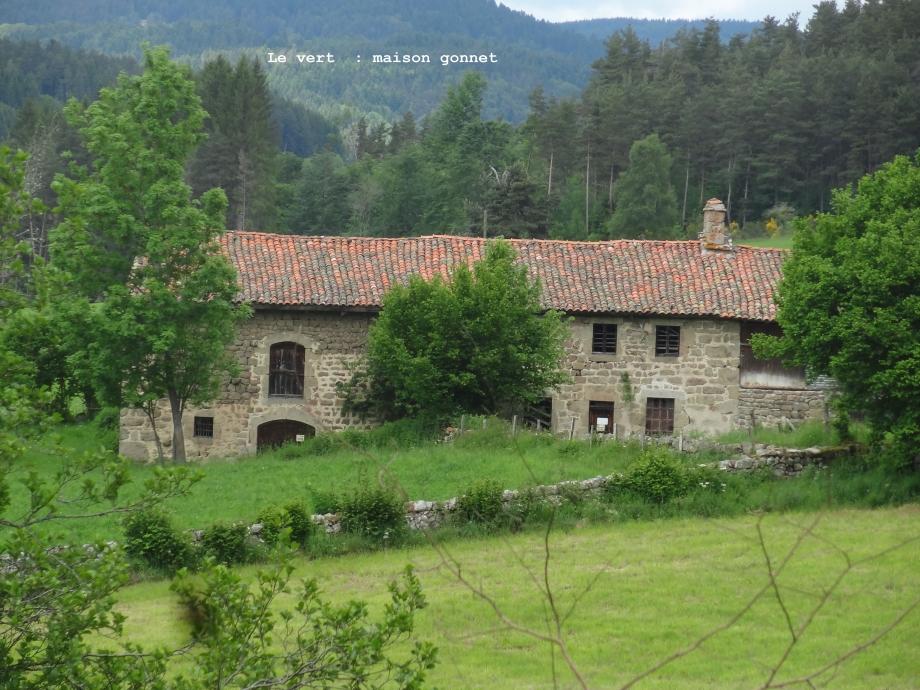 le vert maison gonnet ().JPG