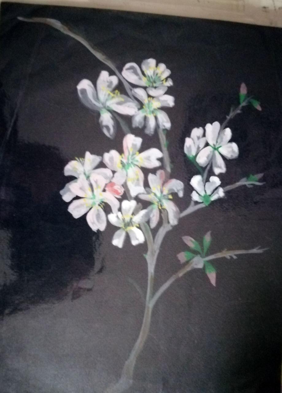 fleurs d'amandier oui non.jpg