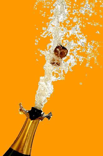 Bouchon champagne.jpg