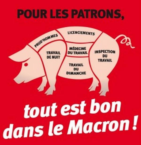 macron cochon.jpg