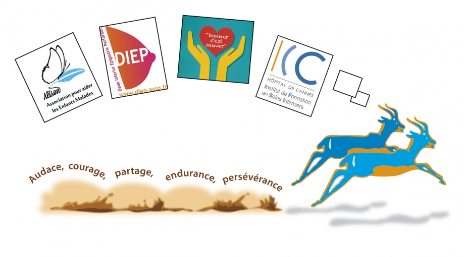 gazelle3_WEB.jpg