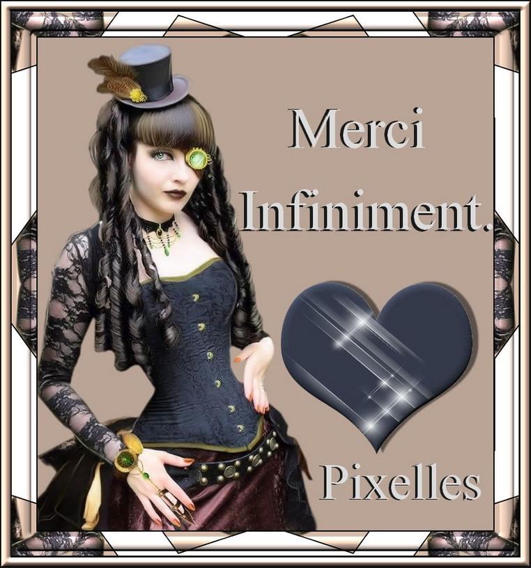PIXELLES MERCI.jpg
